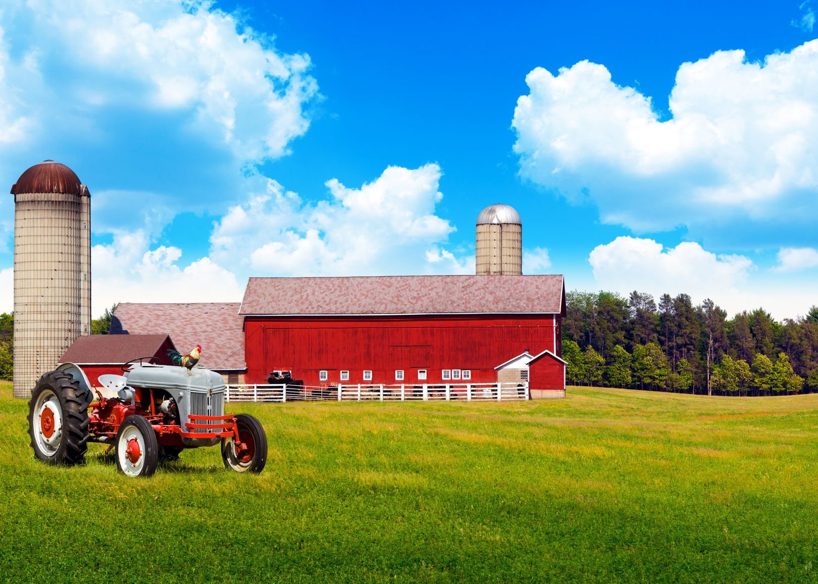 St. Louis Farm & Ranch Insurance
